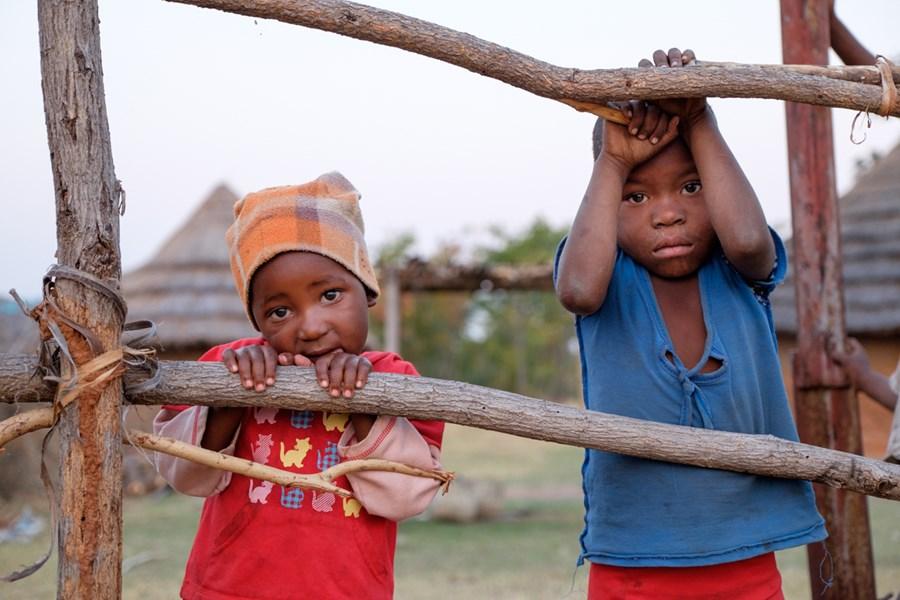 Hälften av barnen på landet i Zimbabwe har inte nog att äta. Bild: Caritas Internationalis